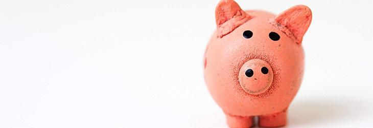 Sparschwein zum Sparen für die Altersvorsorge
